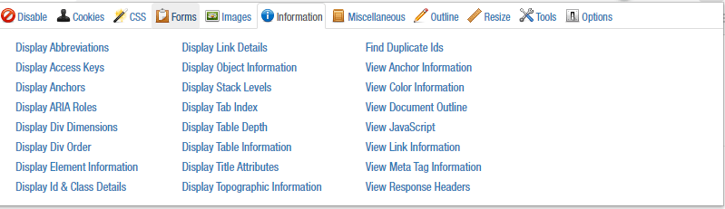 Information Tab from the Web Developer Extension